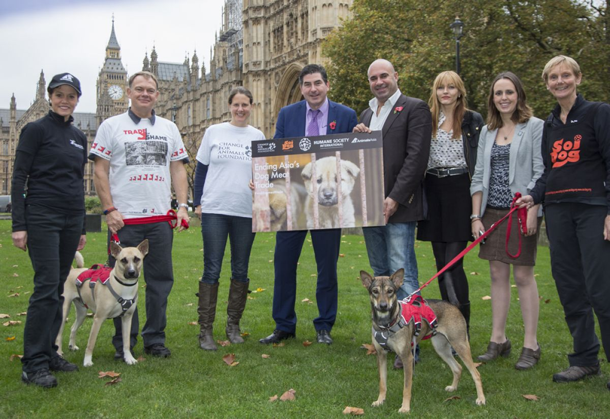 BRITISH MEMBERS OF PARLIAMENT COMMIT TO ACTIONS TO TACKLE THE DOG MEAT TRADE